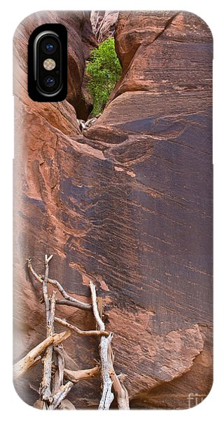 Canyon Ladder IPhone Case
