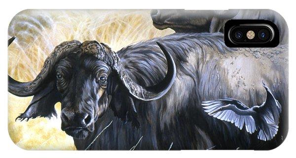 Da206 Cape Buffalo By Daniel Adams IPhone Case