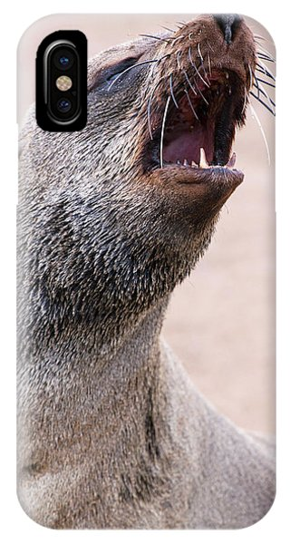 Cape Fur Seal Phone Case by Simon Booth
