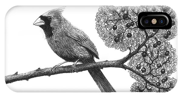 Cardinal Bird On Branch Phone Case by Adam Vereecke