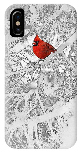 Cardinal In Winter IPhone Case