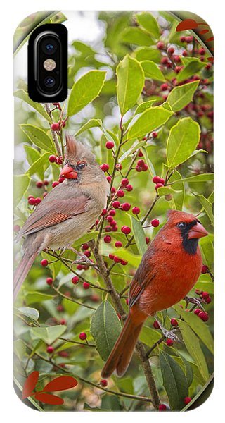 Cardinals In Holly IPhone Case