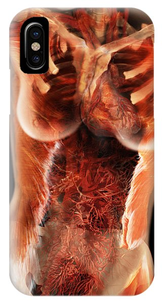 Flow Visualization iPhone Case - Cardiovascular System, Female Torso by Anatomical Travelogue