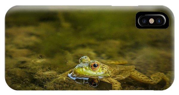 Carefully Scrutinized IPhone Case