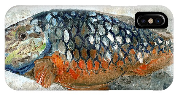 iPhone Case - Caribbean Fish Orange And Blue by Arch