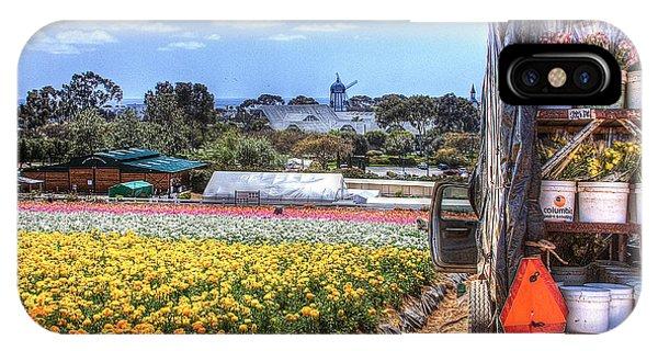 iPhone Case - Carlsbad Flower Fields by Ann Patterson