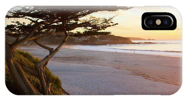 iPhone Case - Carmel, California, Cypress Tree by Bill Bachmann