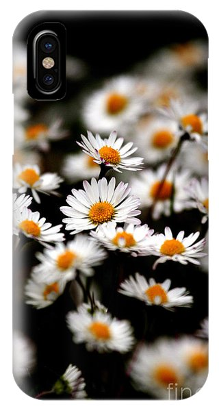 Carpet Of Daisies IPhone Case