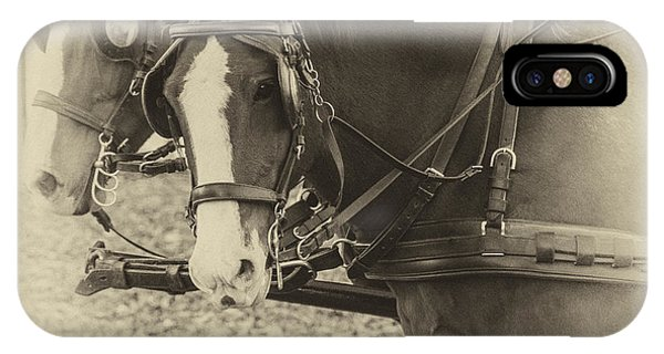 Carriage Horses II IPhone Case