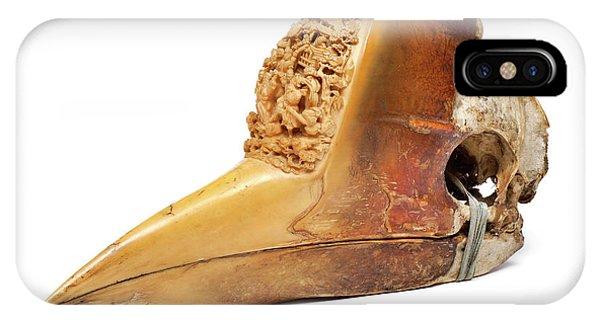 Carved Hornbill Skull IPhone Case