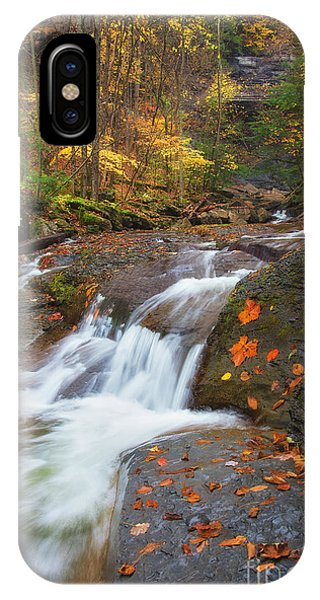 Cascade In The Glen IPhone Case