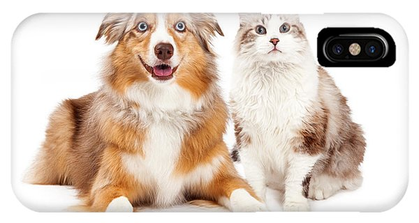 Cat And Happy Dog Together IPhone Case