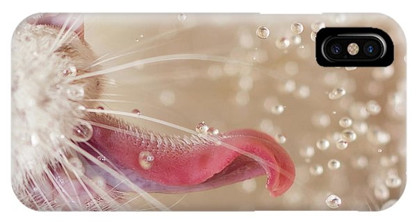 Water Droplets iPhone Case - Cat And Water Drops by Oranit Turgeman