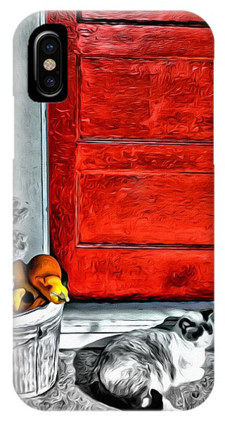 Cat By The Red Door IPhone Case