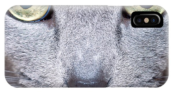 Russia iPhone Case - Cat Eyes by Nailia Schwarz