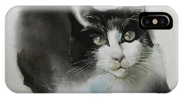 Cat In Black And White IPhone Case