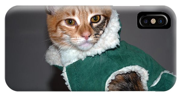 Cat In Patrick's Coat IPhone Case