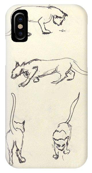 Cat Lines IPhone Case