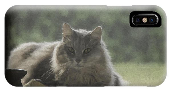 Cat N Saddle IPhone Case