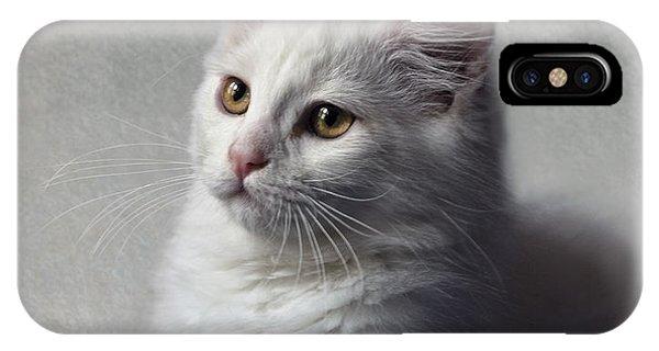Cat On Texture - 02 IPhone Case