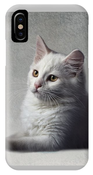Cat On Texture - 02 IPhone Case