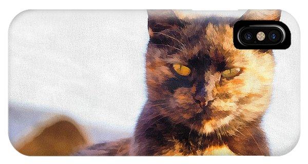 Cat Portrait Paint IPhone Case