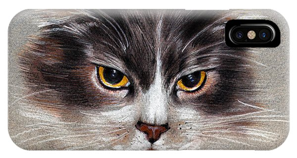 Cat Portrait Yellow Eyes IPhone Case