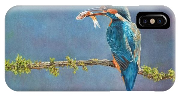 Kingfisher iPhone Case - Catch Of The Day by David Stribbling