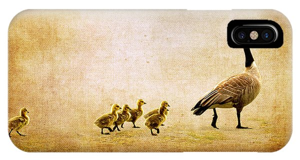 Goslings iPhone Case - Catch Up Little Gosling by Lisa Knechtel