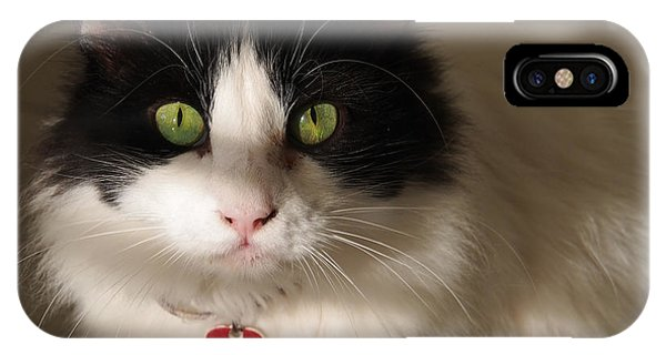 IPhone Case featuring the photograph Cat's Eye by Karen Zuk Rosenblatt