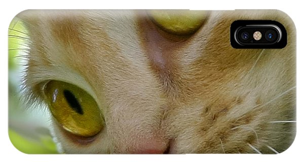 Cats Eyes IPhone Case