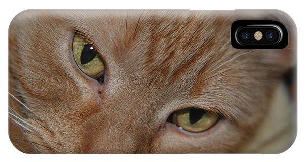 Cat's Eyes IPhone Case