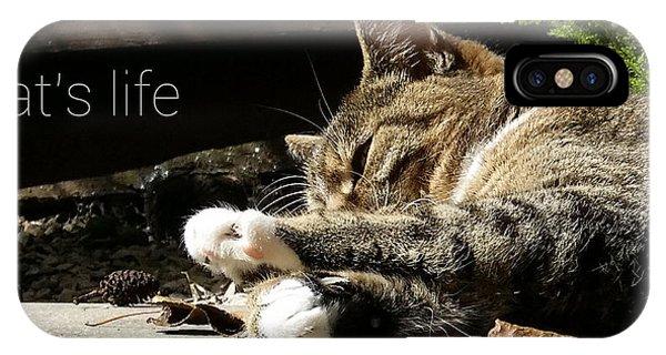 Cat's Life 2 IPhone Case