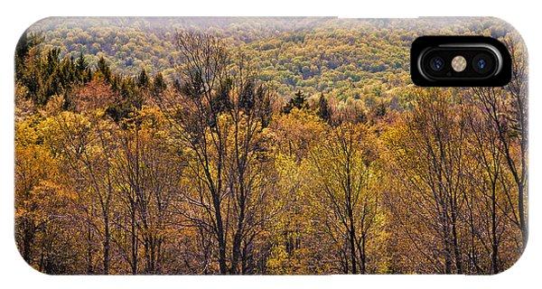 Catskill Color IPhone Case