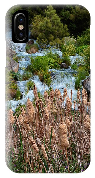 Cattails And Waterfalls IPhone Case