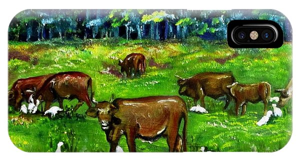 Cattle Grazing With Egrets IPhone Case