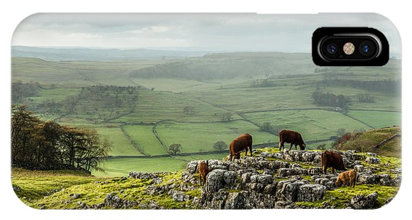 IPhone Case featuring the photograph Cattle In The Yorkshire Dales by Susan Leonard