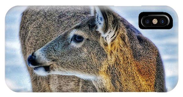 Cautious Deer IPhone Case