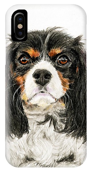 Cavalier King Charles Spaniel Painting IPhone Case
