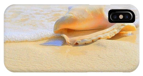 Cayman Conch #2 IPhone Case