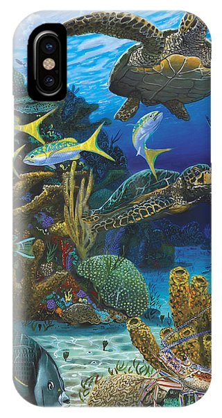 Fish iPhone Case - Cayman Turtles Re0010 by Carey Chen