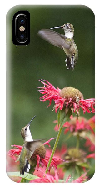 Cecilia's Hummers. IPhone Case