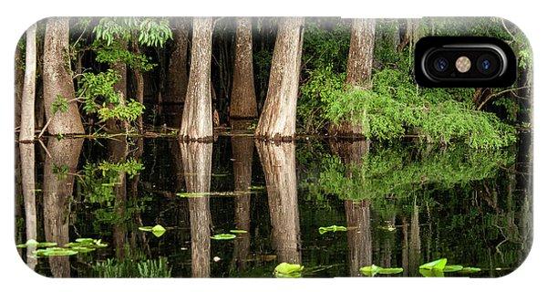 Cypress iPhone Case - Cedar Trees In Suwannee River, Florida by Sheila Haddad