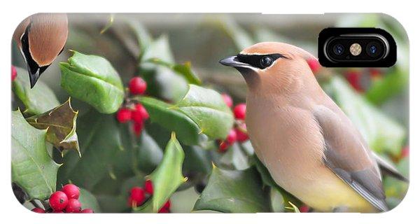Cedar Waxwing In Holly Tree IPhone Case