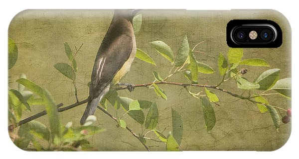Cedar Waxwing Berry Pickin  IPhone Case