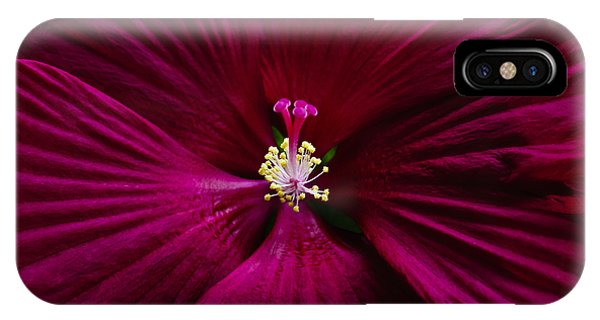 Center Folds IPhone Case