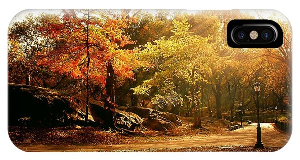 New Leaf iPhone Case - Central Park Autumn Trees In Sunlight by Vivienne Gucwa