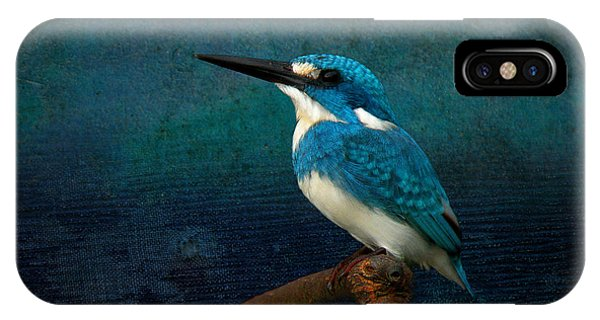 Cerulean Kingfisher Blue Alcedo Coerulescens IPhone Case