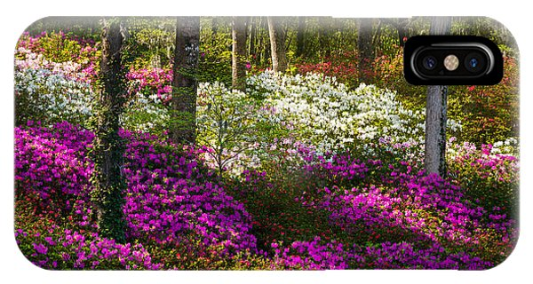 Charleston Sc Azalea Flowers And Sunlight - Fairytale Forest IPhone Case