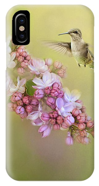 Humming Bird iPhone Case - Chasing Lilacs by Jai Johnson
